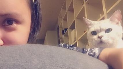 张歆艺产后自拍_张歆艺凌晨晒素颜自拍照 表情委屈爱猫抢镜