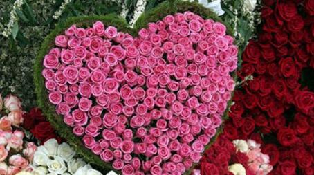 七夕玫瑰花折法详细步骤图解