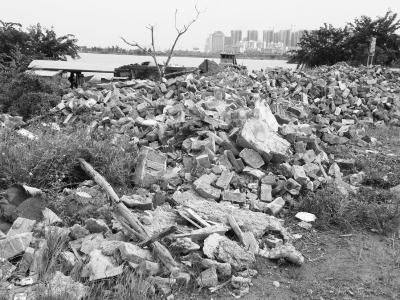 为何屡禁不止?海口新埠岛南渡江边又见乱倒垃圾