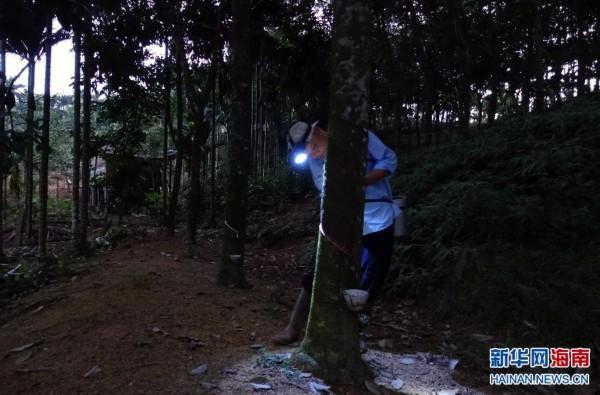 海南:卖一杯胶水买不到一瓶矿泉水