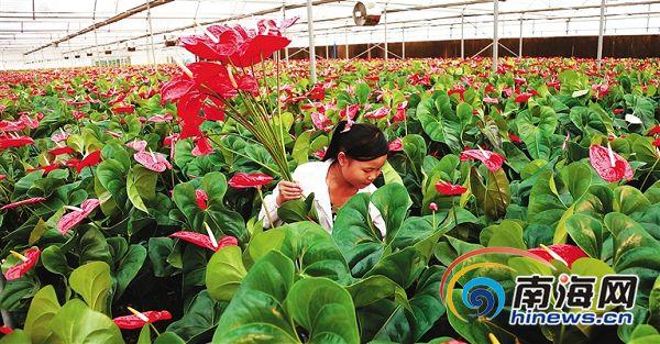 东方调整优化产业结构