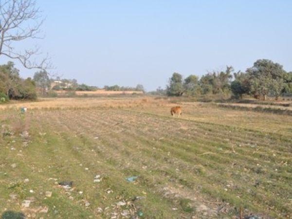 儋州部分水渠无水堤坝断裂中和镇五分之一水田撂荒