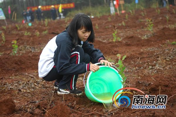 金海浆纸举办义务植树活动志愿者和师生当天植树千株