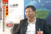 张磊:补全城镇公共服务