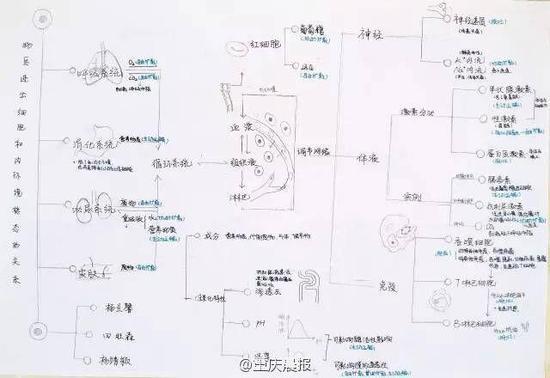 学校平面图手绘图简易