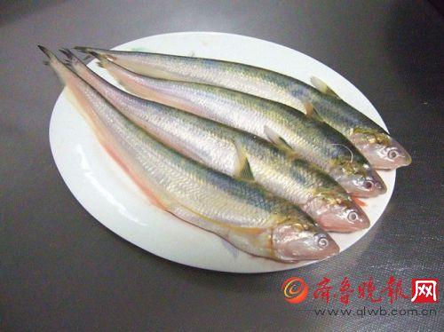 【长江刀鱼价格疯涨】每斤竟高达4000元 揭秘长江刀鱼