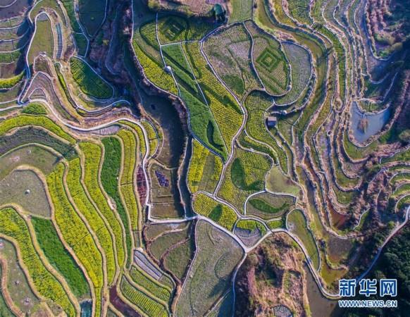 8d壁画实景图海南风景