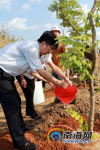 三亚500名干部为抱坡岭披绿今后让植树造林成为常态