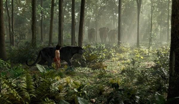 危险森林的cg高清图