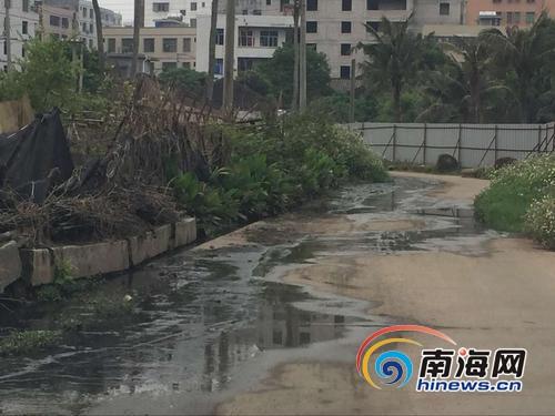 海口水头村污水横流5年没人管回应:列入改造计划