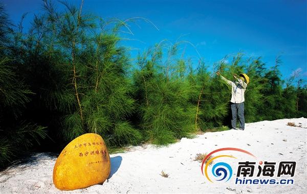 三沙积极开展绿化岛礁行动力争做出一岛一特色