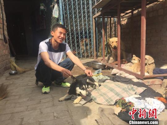 青海省唯一流浪动物救助站的酸甜苦辣