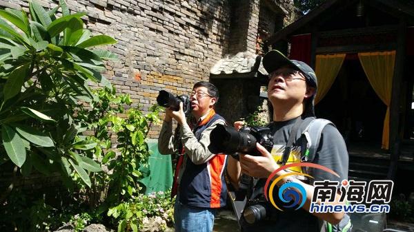 <b>台湾15名摄影家用镜头记录海口骑楼作品将在琼台展出</b>