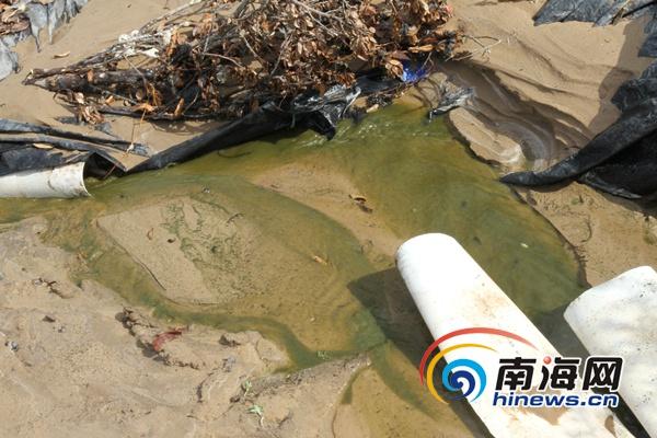 三亚海棠区3家青蛙养殖场污染地下水 被依法强拆