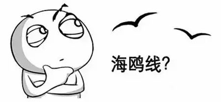 """一条海鸥线 引发的2016隆鼻""""大战"""""""