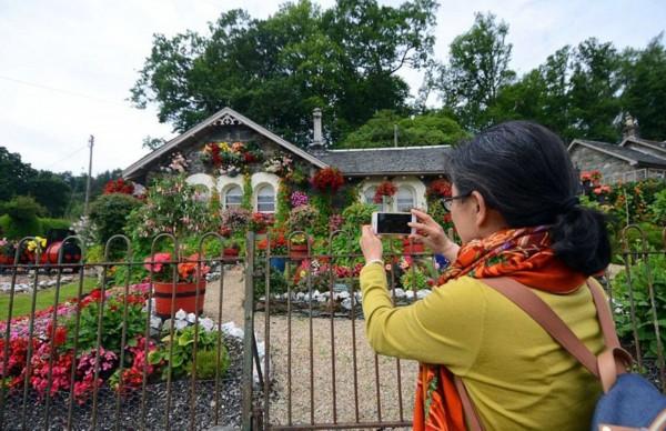 方法七旬花16年操作老人拔罐花园法的打造梦幻图片