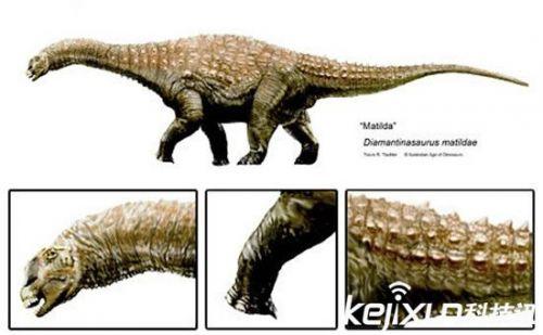 远古巨蛇身长超过巴士 盘点十大古生物发现