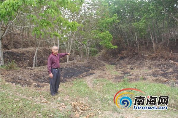 <b>琼海森警破获一宗森林失火案过火林地60.8亩</b>