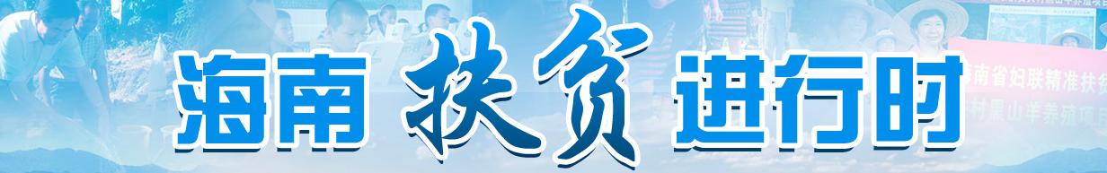 """海南省政府办公厅与保亭水尾村193名贫困户""""攀亲"""""""