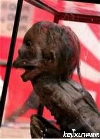 揭阳市惠来县仙魇镇水库_广东水库抓到一只水鬼 是传说中的水猴子?__海南新闻网_南海网