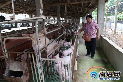 儋州爱心人士韦欢娥创办农疗站 建起残疾人幸福家园