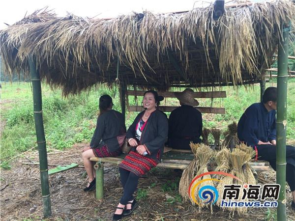 """白沙举行""""啦欧门""""庆丰收活动游客称收割山兰稻过瘾"""