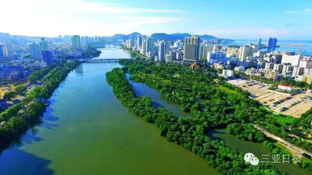 高空眺望三亚河.绿色的红树林,沿着河岸生长,生态环境迷人.