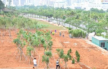 三亚海螺观景平台将竣工 可远眺月川生态绿道