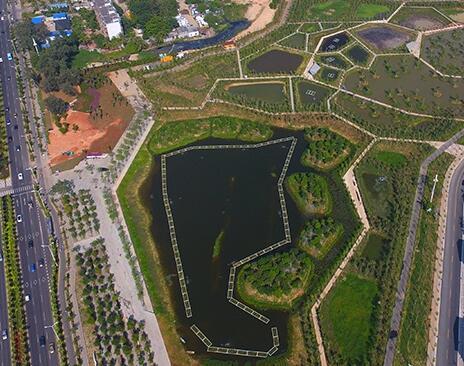 三亚东岸湿地综合性公园已建成开放 面积超千亩