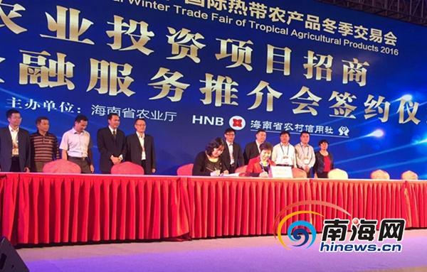 海南冬交会举办金融服务推介会现场签约29个招商项目