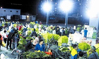 南果农产品批发市场试营业 方便周边菜农交易