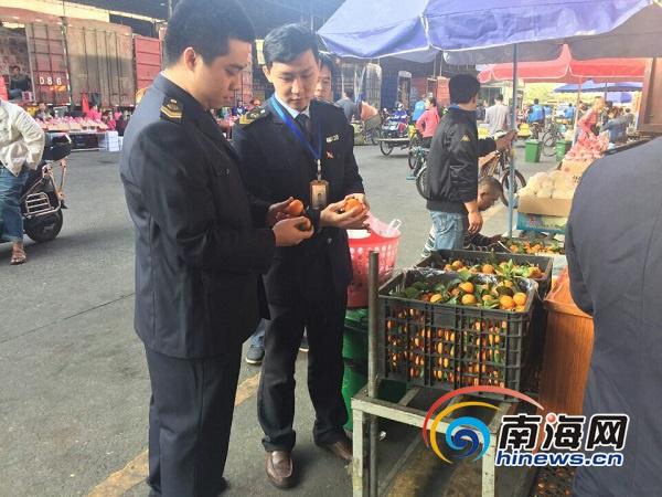 海南全覆盖抽检南北水果批发市场31批次桔橙未发现染色砂糖橘