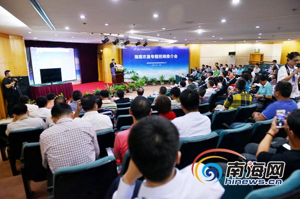 海南农垦在海博会上签约三个项目 协议投资近亿元