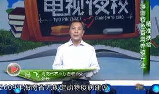海南省脱贫致富电视夜校第十七课