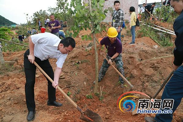 三亚天涯区开展春季植树造林去年植树23万余株