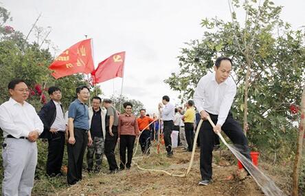 春节假期后首日 三亚在全市开展植树迎春活动
