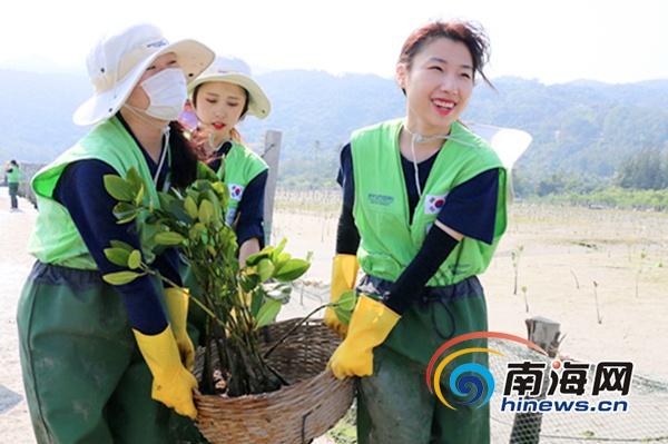 """中韩百名大学生三亚植树共同筑造绿色""""海岸线"""""""