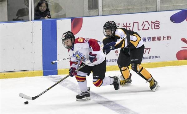 全国少儿冰球大奖赛:齐齐哈尔市雄狮冰球队夺