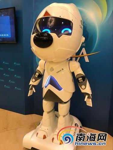 2019博鳌人工智能受追捧 智能机器人、VR体验想试试吗