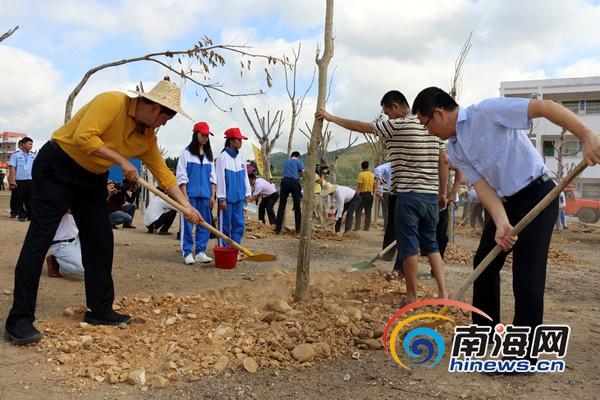 乐东持续开展绿化宝岛大行动2019年将造林9000亩