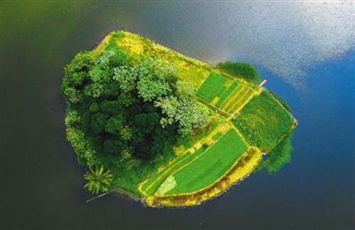 《人民日报》点赞海口美舍河:将水体治理融入生态修复
