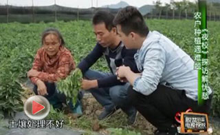 海南省脱贫致富电视夜校第二十一课