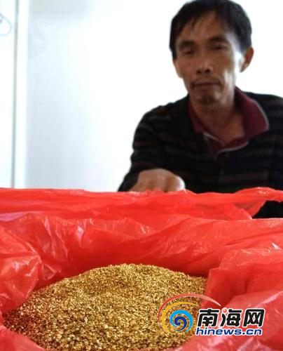 """海口一老农遭连环骗局 8万元买了6两""""金粉"""""""