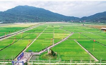 南繁基地推动海南农业转型升级 助扶贫事业发展
