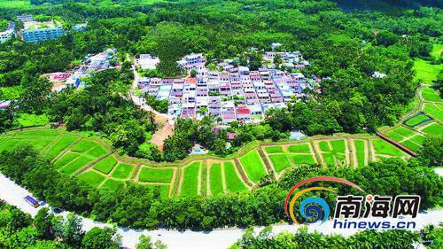"""琼中鸭坡村""""产业扶贫+文化扶贫""""模式助力美丽乡村建设"""