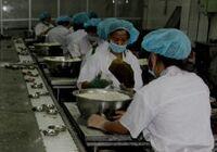 儋州广和粽打造粽品牌 采用现代+传统工艺蒸煮