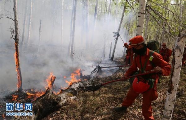内蒙古那吉林场森林火灾火场东北线明火已扑灭