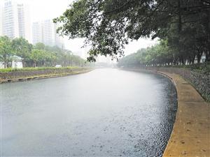 经受住暴雨考验 海口美舍河生态修复示范段水位正常