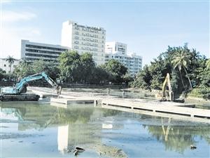 海口东西湖拆除水中喷泉基础改种小植物打造生态链