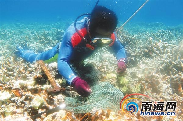 """海南稳步推动海洋牧场建设给海洋生物安个""""家"""""""